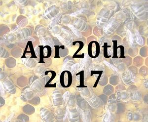 Refresher Beekeeping Course April 20th with Mike Cullen